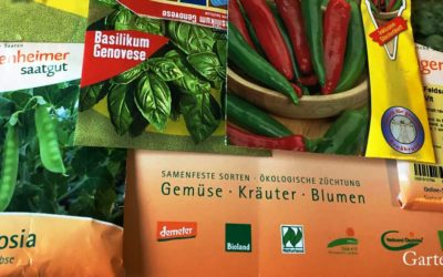 Biosaatgut oder Standard-Saatgut? Wichtige Gründe!