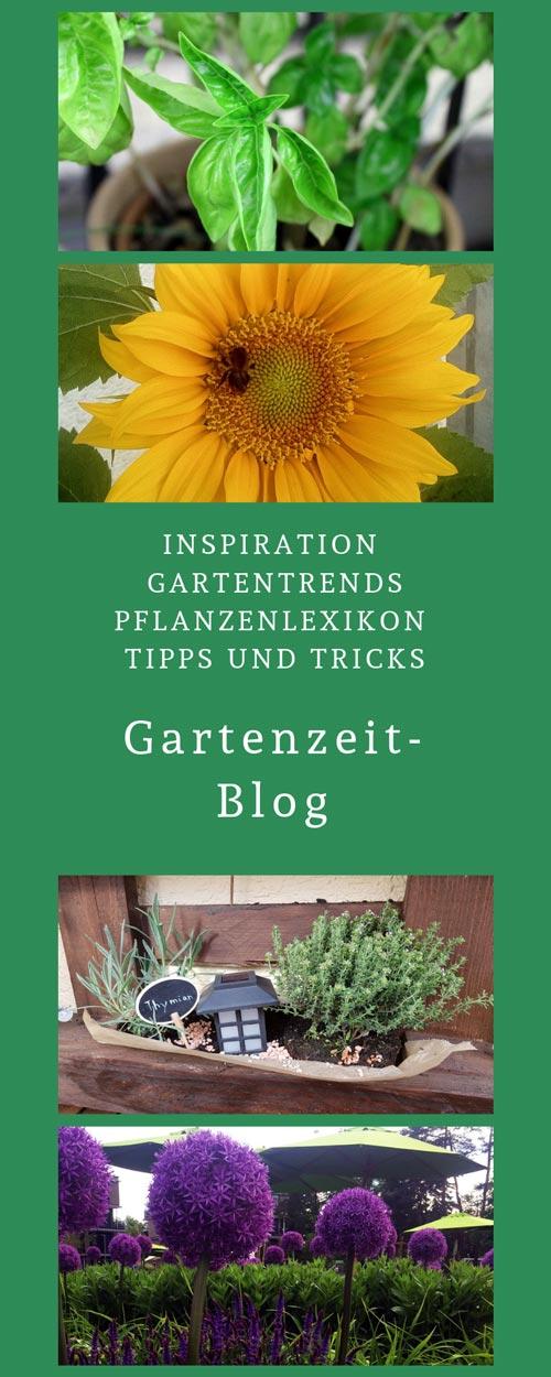 Link zum Garten-Blog von Garten-zeit24