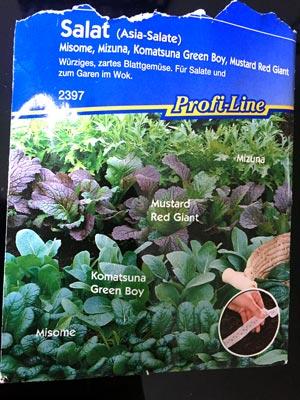 Asia-Salate Saatgut