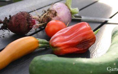 Die 10 besten Pflanzen für den Anbau im Hochbeet