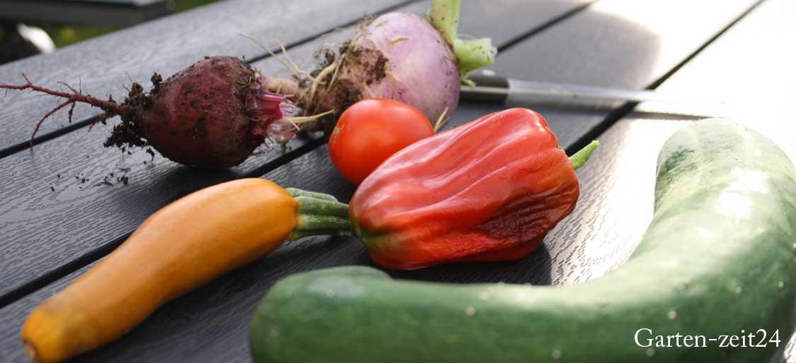 10 Pflanzen für den Anbau im Hochbeet