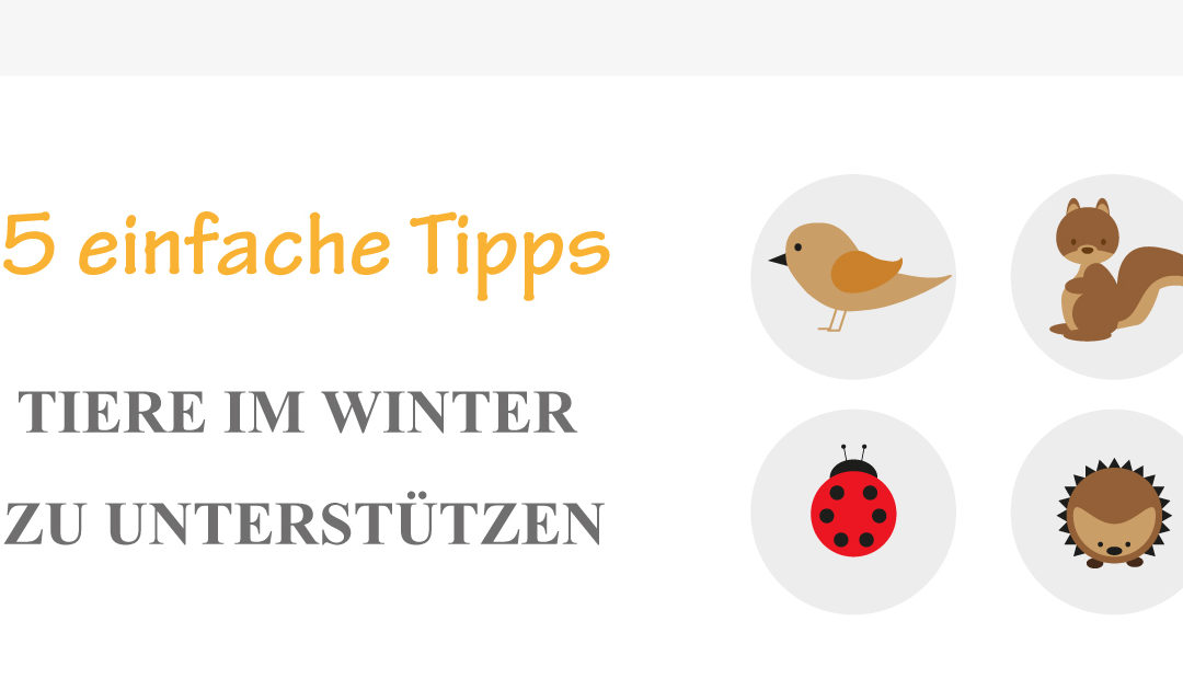 Tierfreundlicher Garten – 5 einfache Tipps Tiere im Winter zu unterstützen