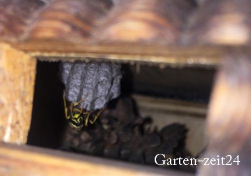 Insektenhotel im naturbelassenen Garten