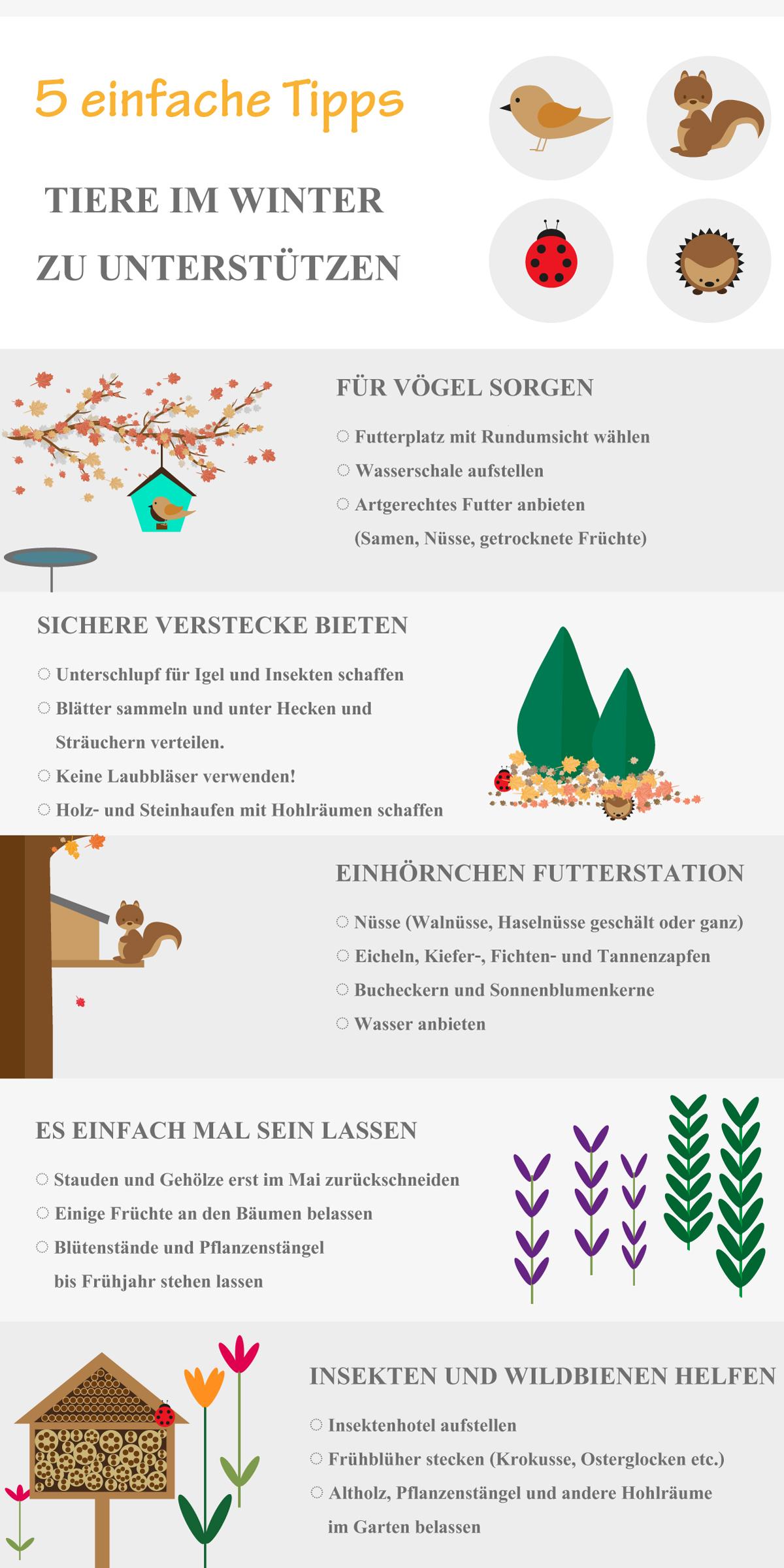 Tierfreundlicher Garten Infografik mit 5 Tipps