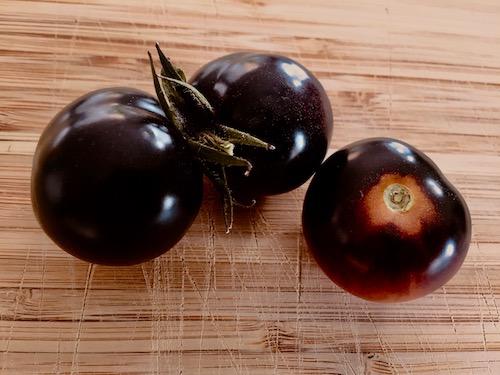 Reife geerntete schwarze Tomaten